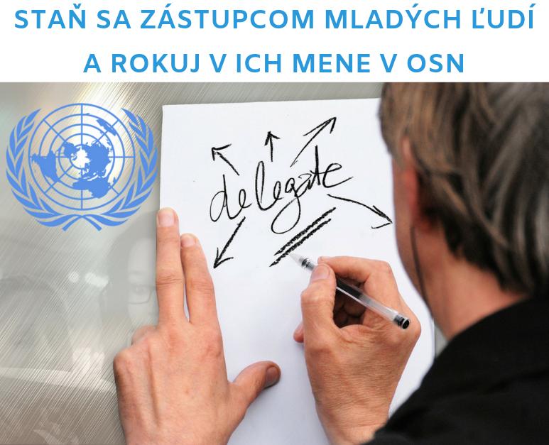 Výzva na mládežníckeho delegáta/mládežnícku delegátku SR pri OSN 2020/2021