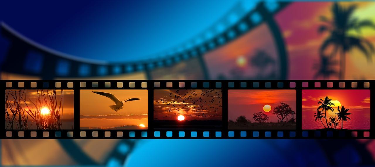 Doručené videa v hodnotení